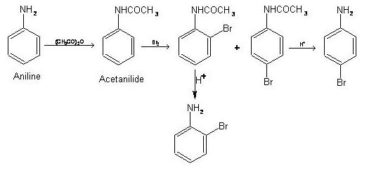 aromatic 31