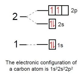 introducing Organic Compounds 7