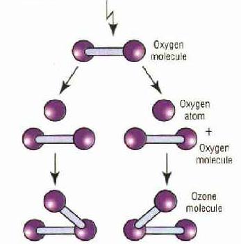 Oxygen 3