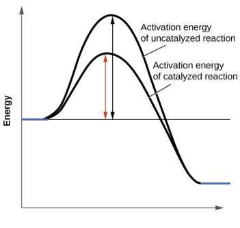 Reaction Profile 2